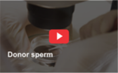donor_sperm